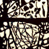 Roseto – nera finestra